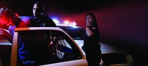 www.TrafficSafetyGuy.com